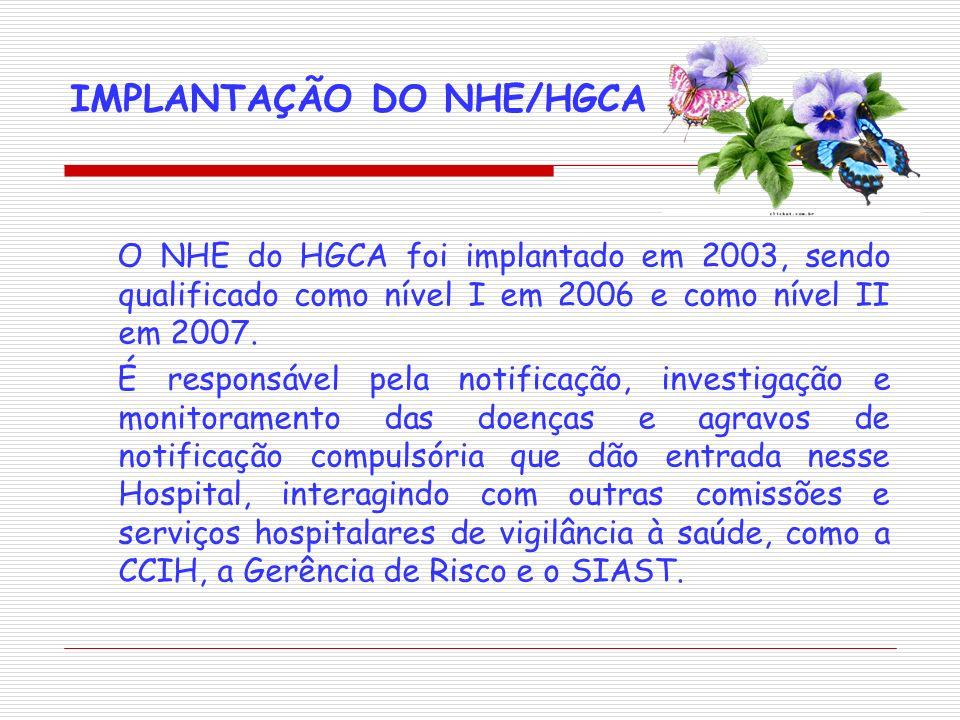 IMPLANTAÇÃO DO NHE/HGCA