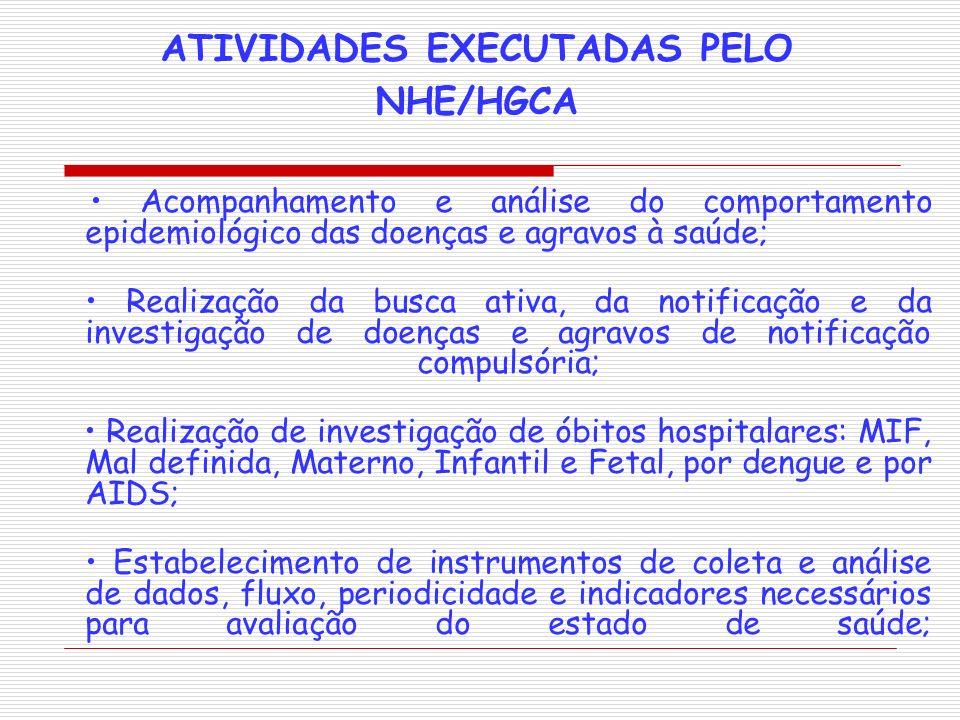 ATIVIDADES EXECUTADAS PELO NHE/HGCA