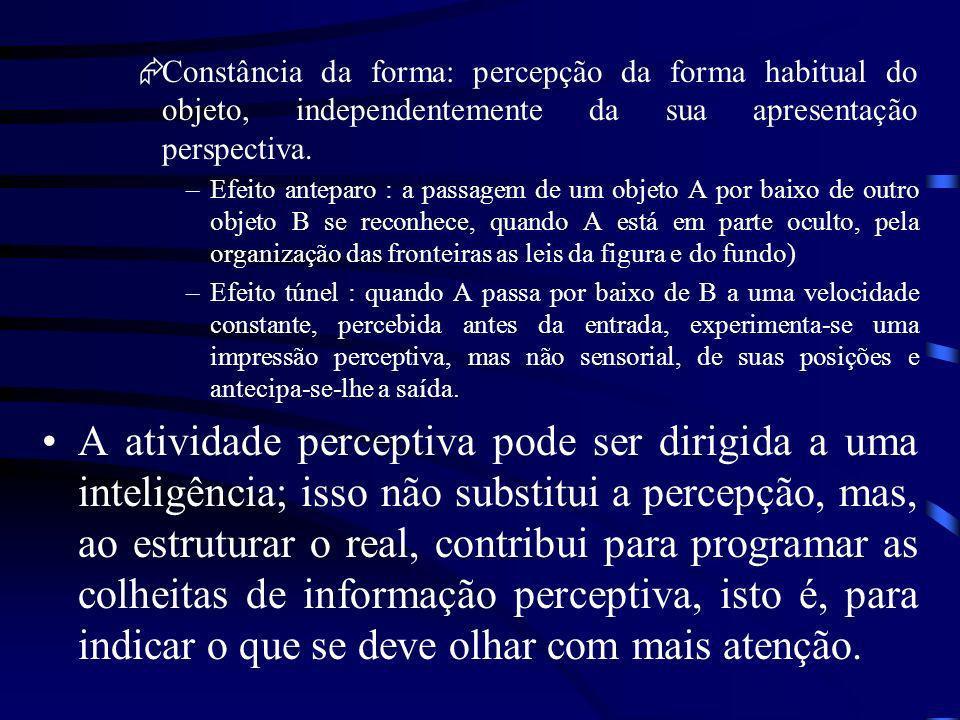 Constância da forma: percepção da forma habitual do objeto, independentemente da sua apresentação perspectiva.