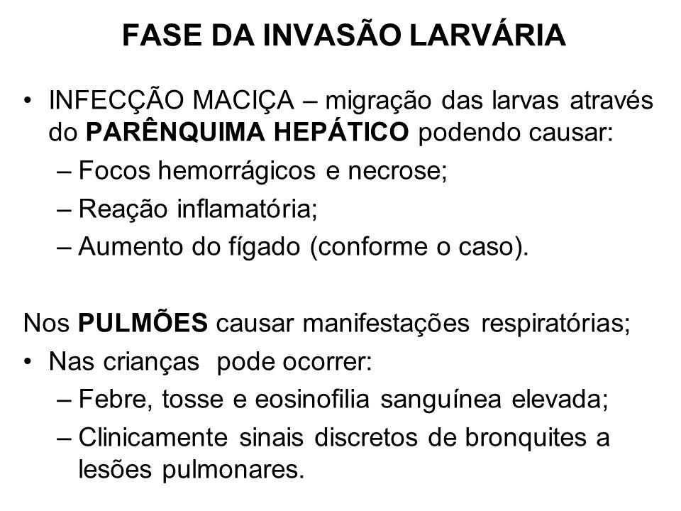 FASE DA INVASÃO LARVÁRIA