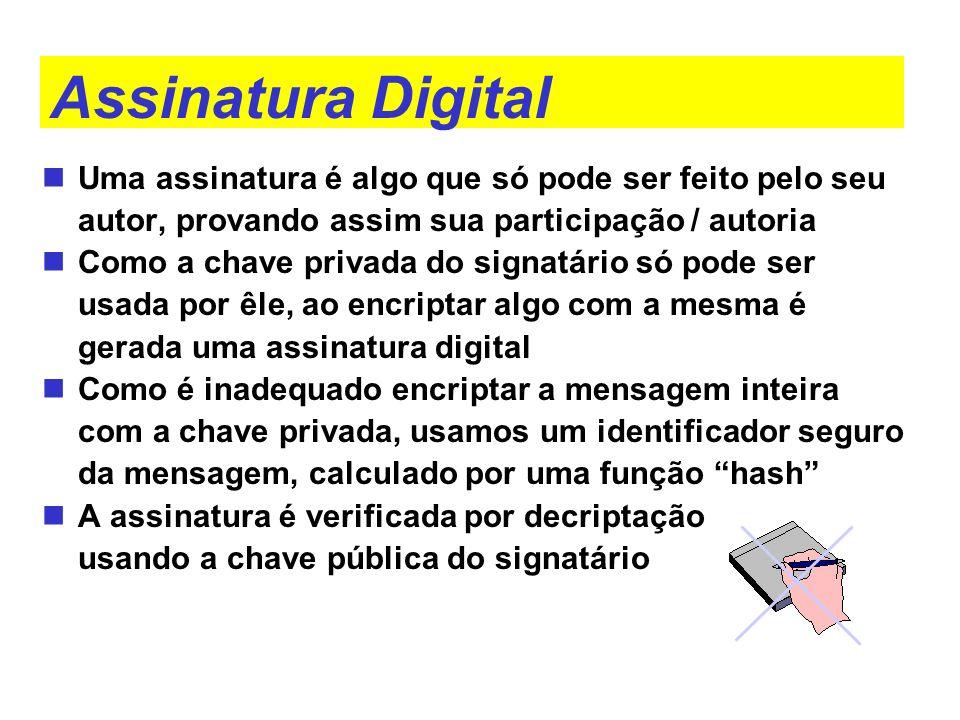Assinatura Digital Uma assinatura é algo que só pode ser feito pelo seu autor, provando assim sua participação / autoria.