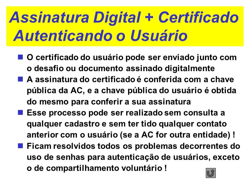 Assinatura Digital + Certificado Autenticando o Usuário