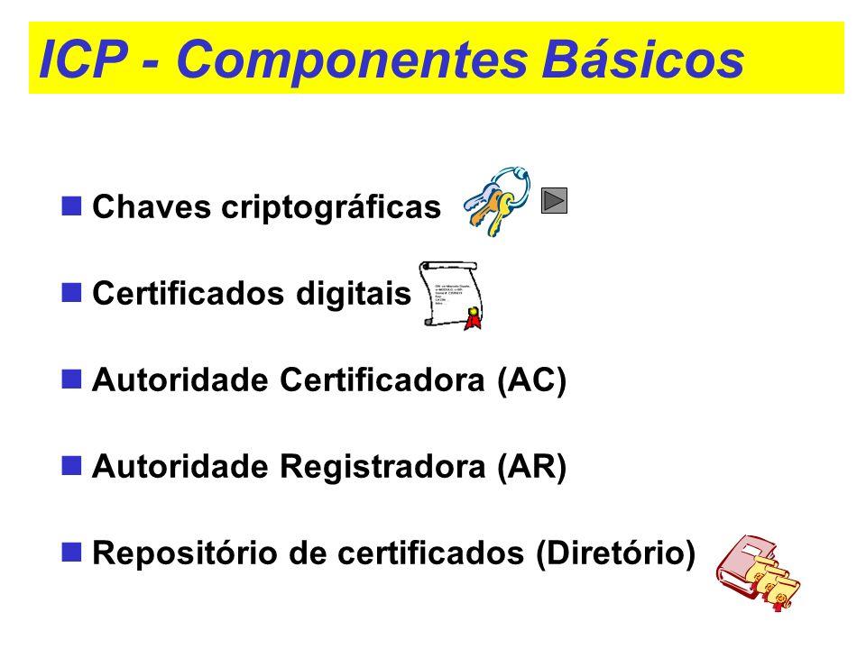 ICP - Componentes Básicos