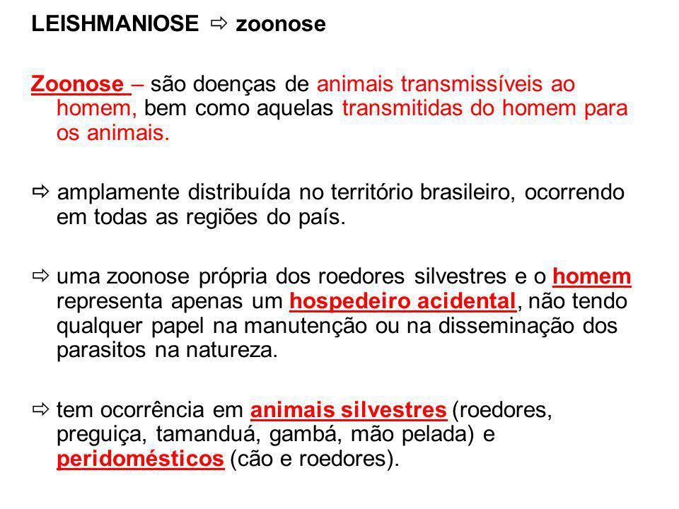 LEISHMANIOSE  zoonose