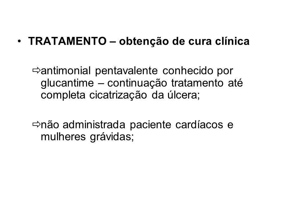 TRATAMENTO – obtenção de cura clínica