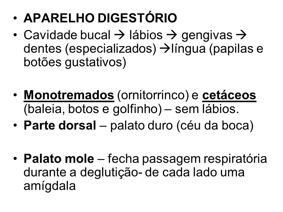APARELHO DIGESTÓRIOCavidade bucal  lábios  gengivas  dentes (especializados) língua (papilas e botões gustativos)