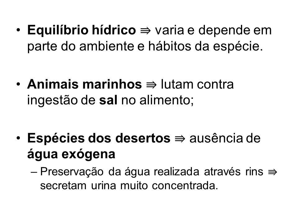 Animais marinhos ⇛ lutam contra ingestão de sal no alimento;