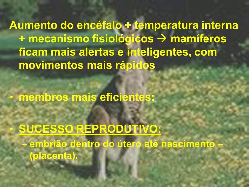 membros mais eficientes; SUCESSO REPRODUTIVO: