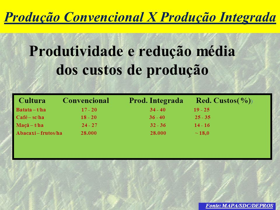 Produtividade e redução média dos custos de produção