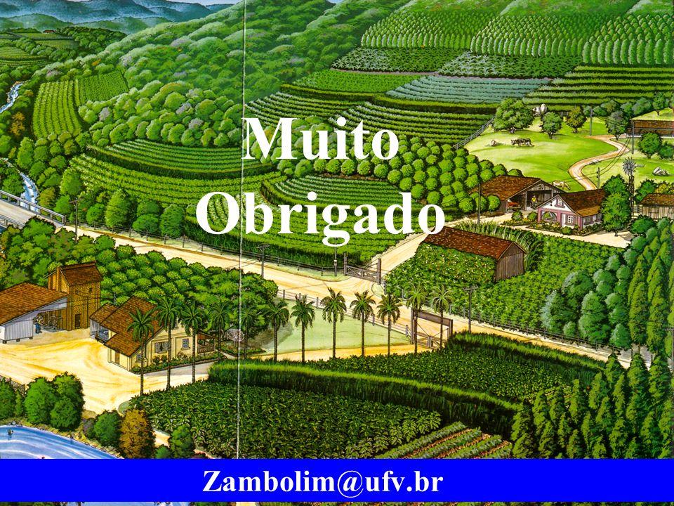Muito Obrigado Zambolim@ufv.br
