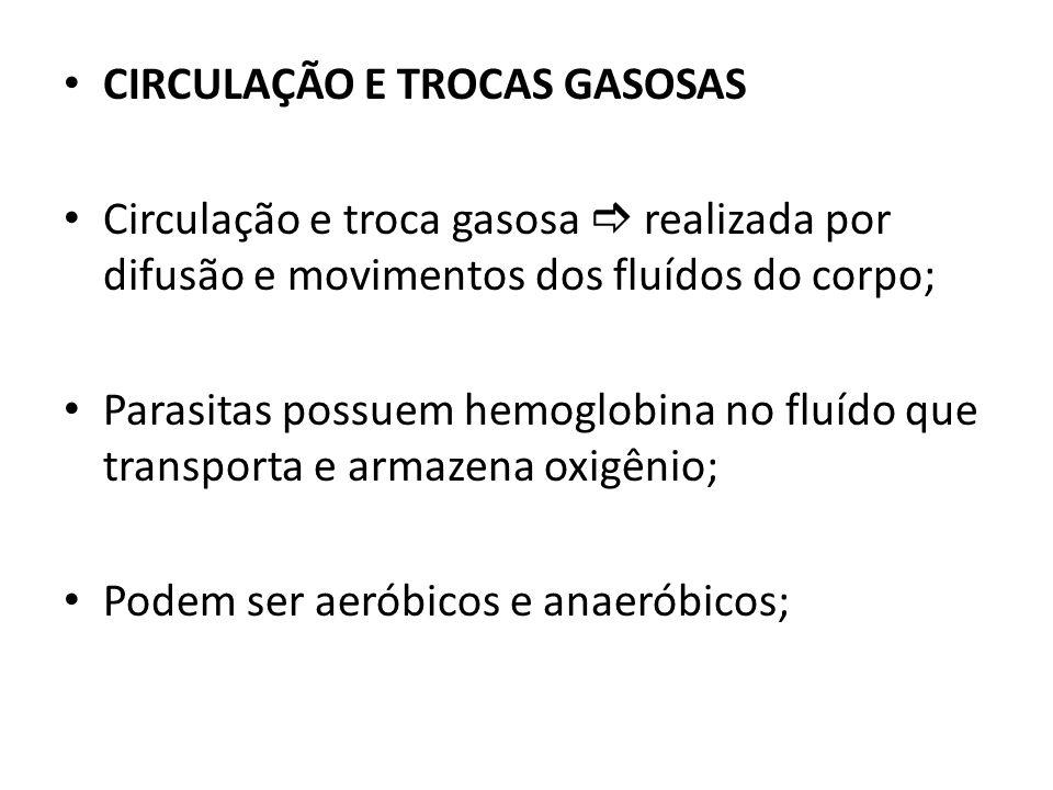 CIRCULAÇÃO E TROCAS GASOSAS