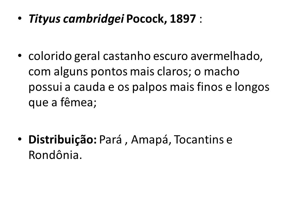 Tityus cambridgei Pocock, 1897 :