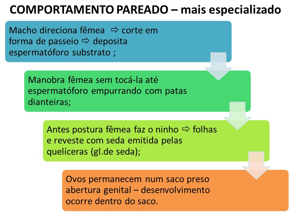 COMPORTAMENTO PAREADO – mais especializado