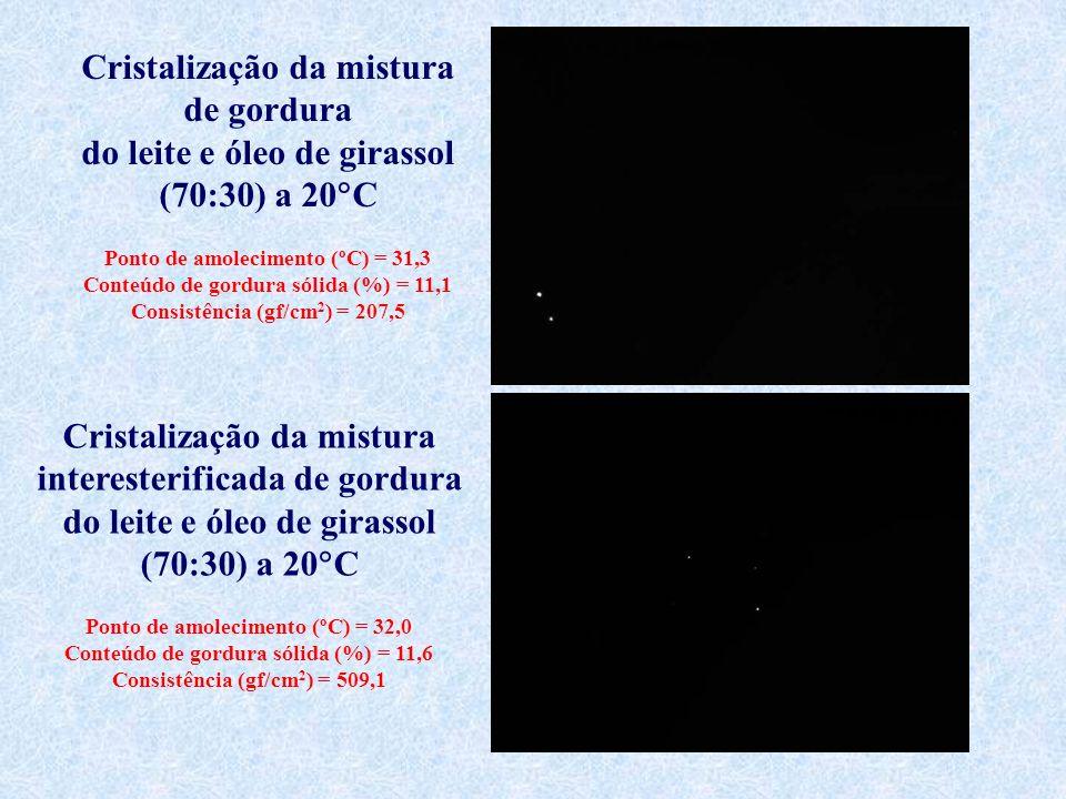 Cristalização da mistura de gordura