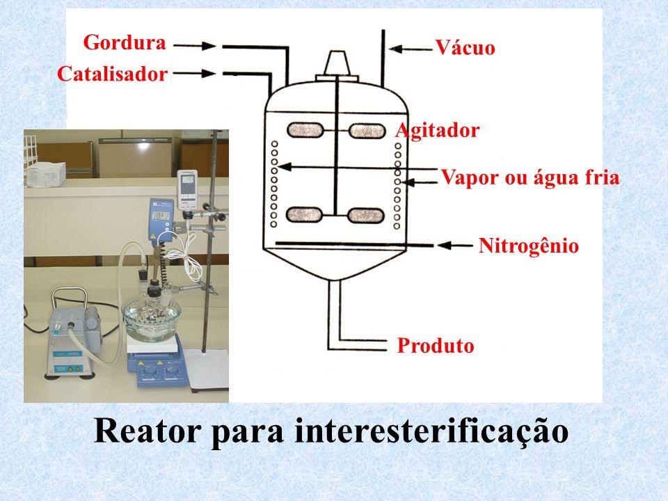 Reator para interesterificação
