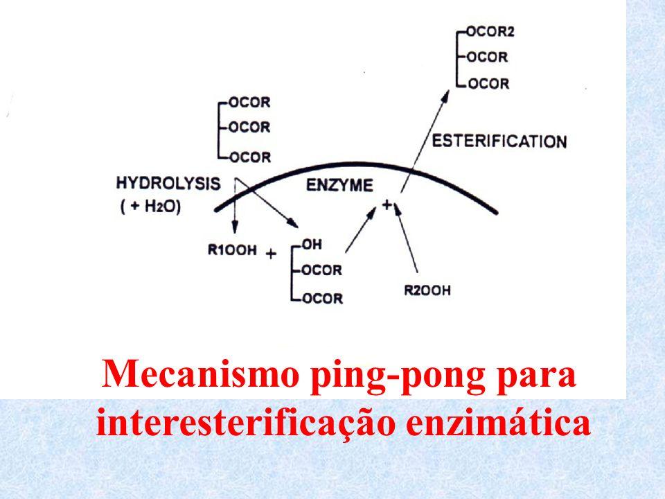 Mecanismo ping-pong para interesterificação enzimática