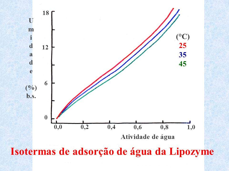 Isotermas de adsorção de água da Lipozyme
