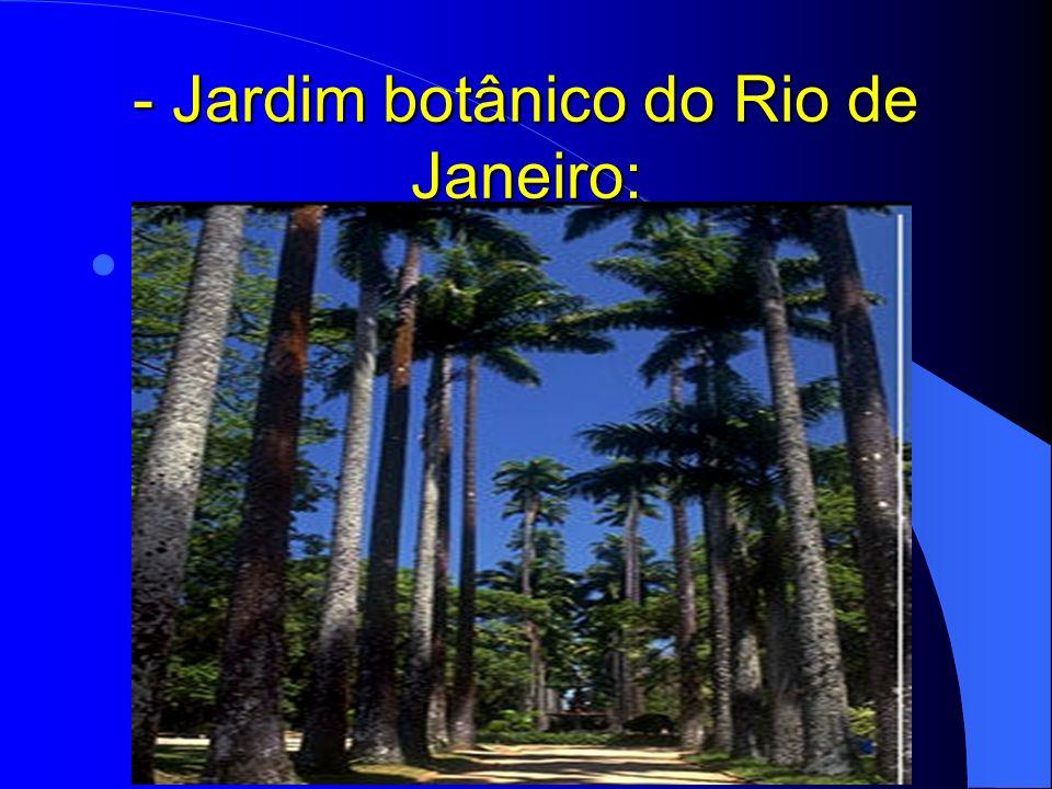 - Jardim botânico do Rio de Janeiro: