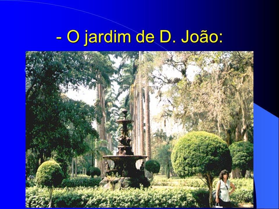 - O jardim de D. João: