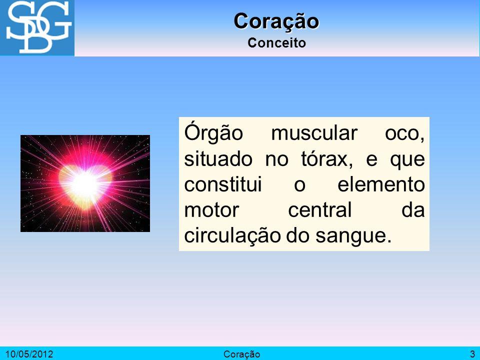 Coração Conceito. Órgão muscular oco, situado no tórax, e que constitui o elemento motor central da circulação do sangue.