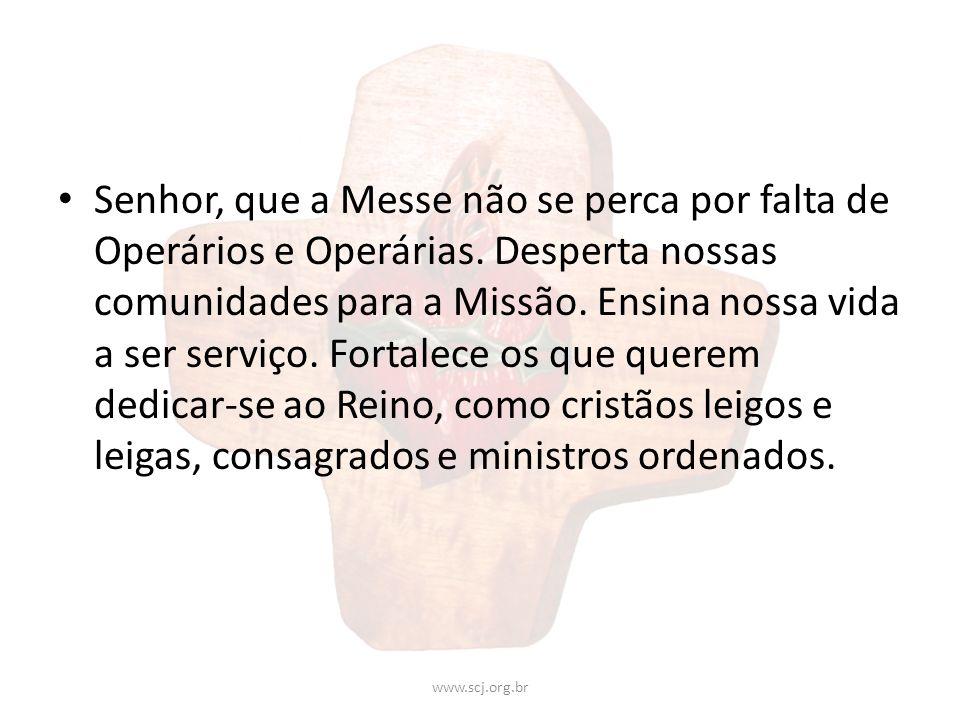 Senhor, que a Messe não se perca por falta de Operários e Operárias