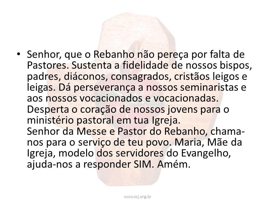 Senhor, que o Rebanho não pereça por falta de Pastores