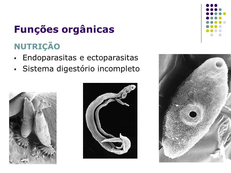 Funções orgânicas NUTRIÇÃO Endoparasitas e ectoparasitas