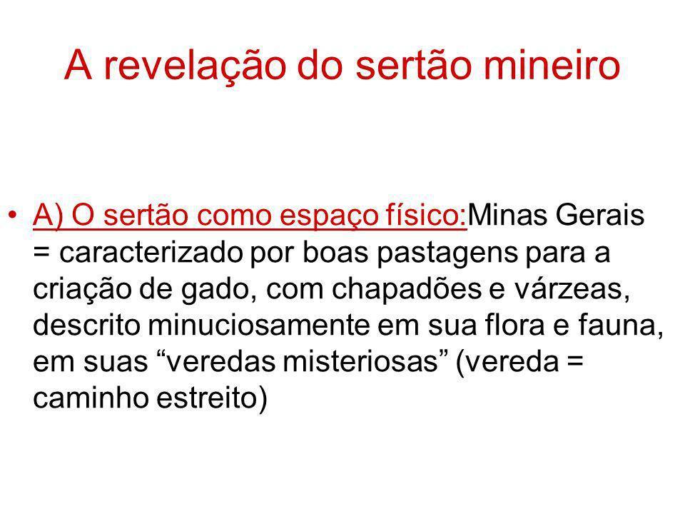 A revelação do sertão mineiro