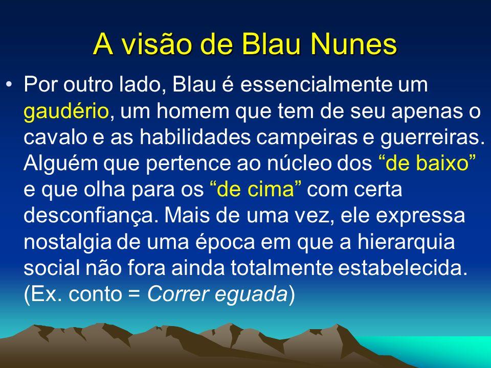 A visão de Blau Nunes