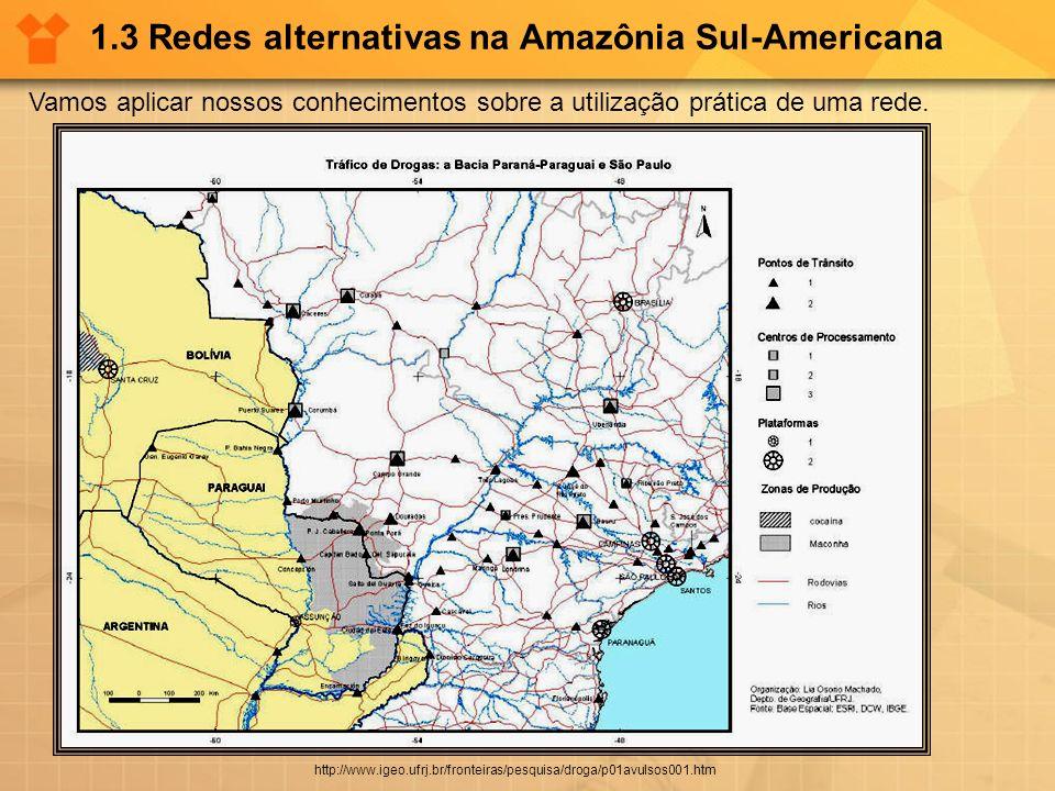 1.3 Redes alternativas na Amazônia Sul-Americana