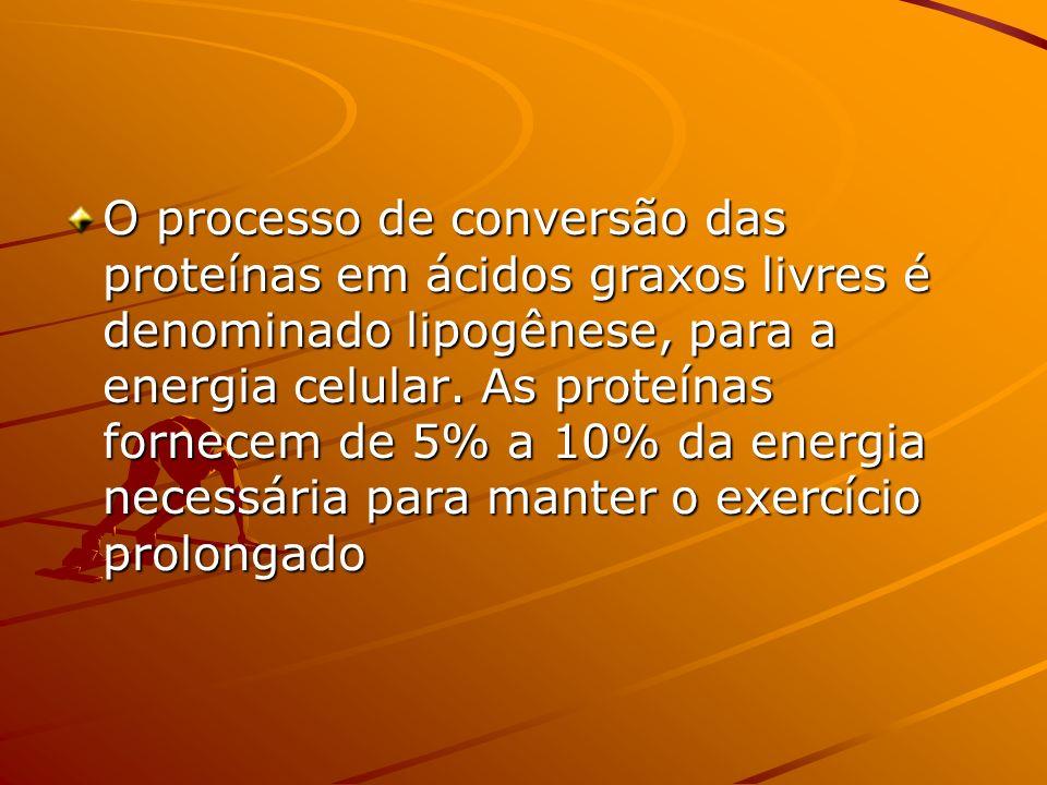 O processo de conversão das proteínas em ácidos graxos livres é denominado lipogênese, para a energia celular.