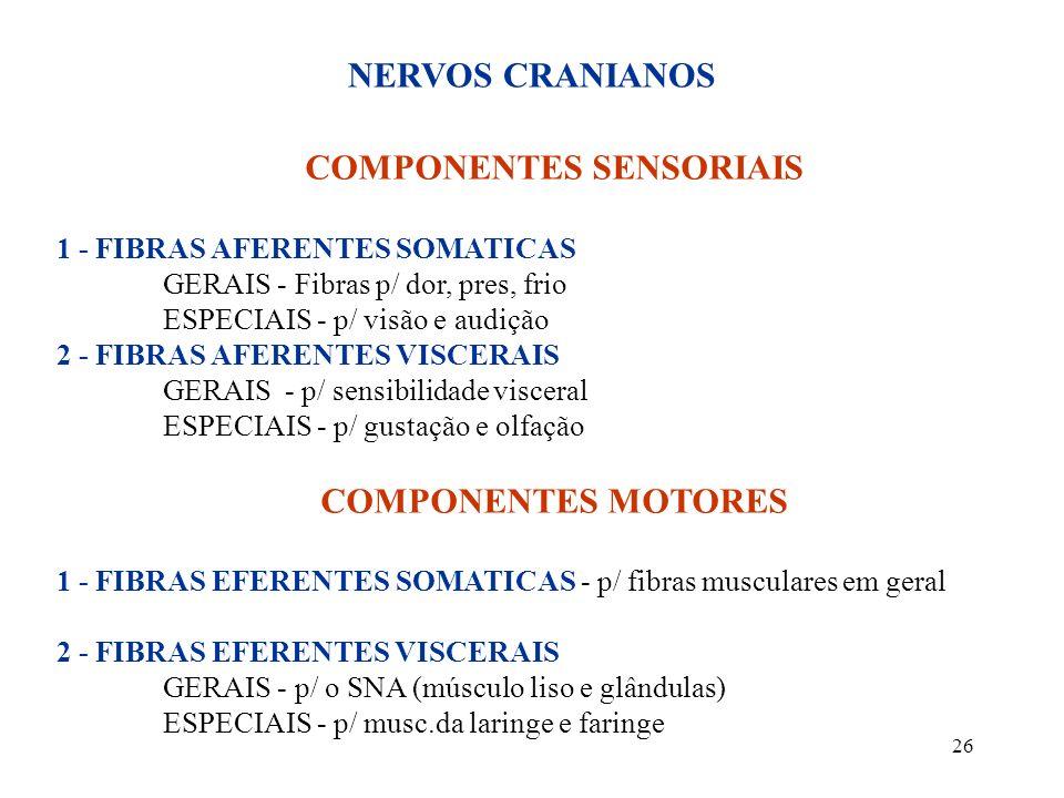 COMPONENTES SENSORIAIS