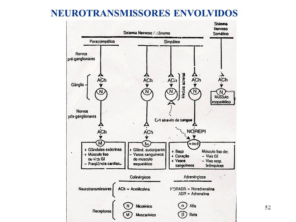 NEUROTRANSMISSORES ENVOLVIDOS