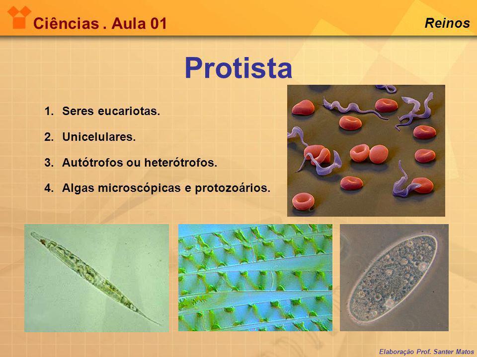Protista Ciências . Aula 01 Reinos Seres eucariotas. Unicelulares.