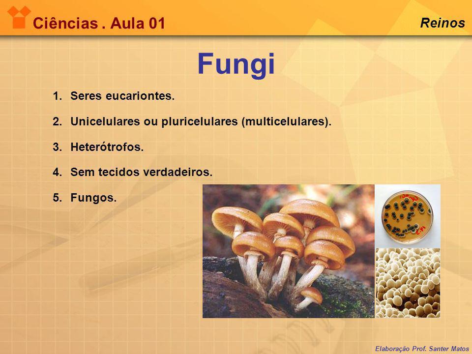 Fungi Ciências . Aula 01 Reinos Seres eucariontes.