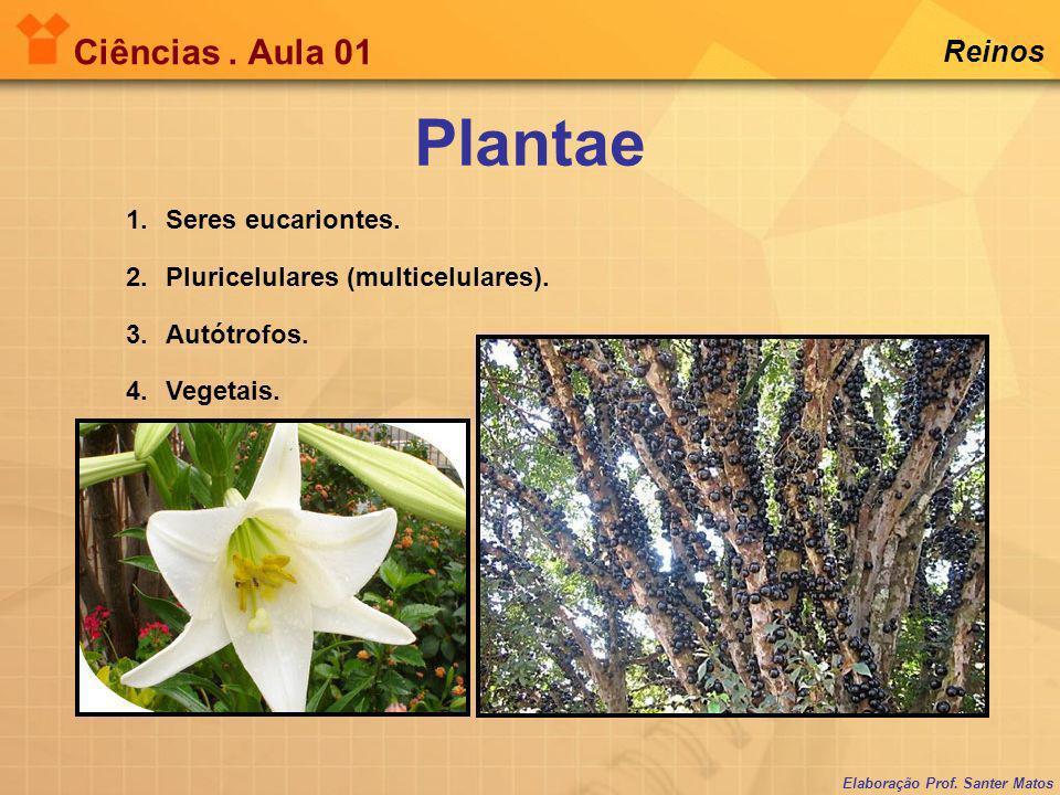 Plantae Ciências . Aula 01 Reinos Seres eucariontes.