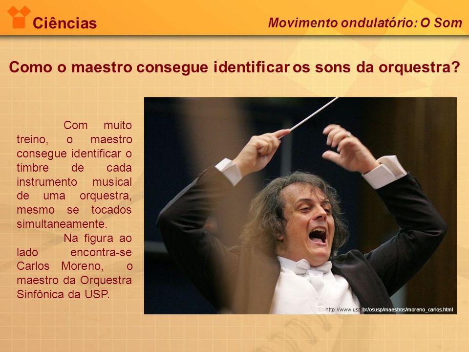 Como o maestro consegue identificar os sons da orquestra