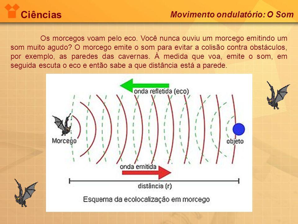 Ciências Movimento ondulatório: O Som