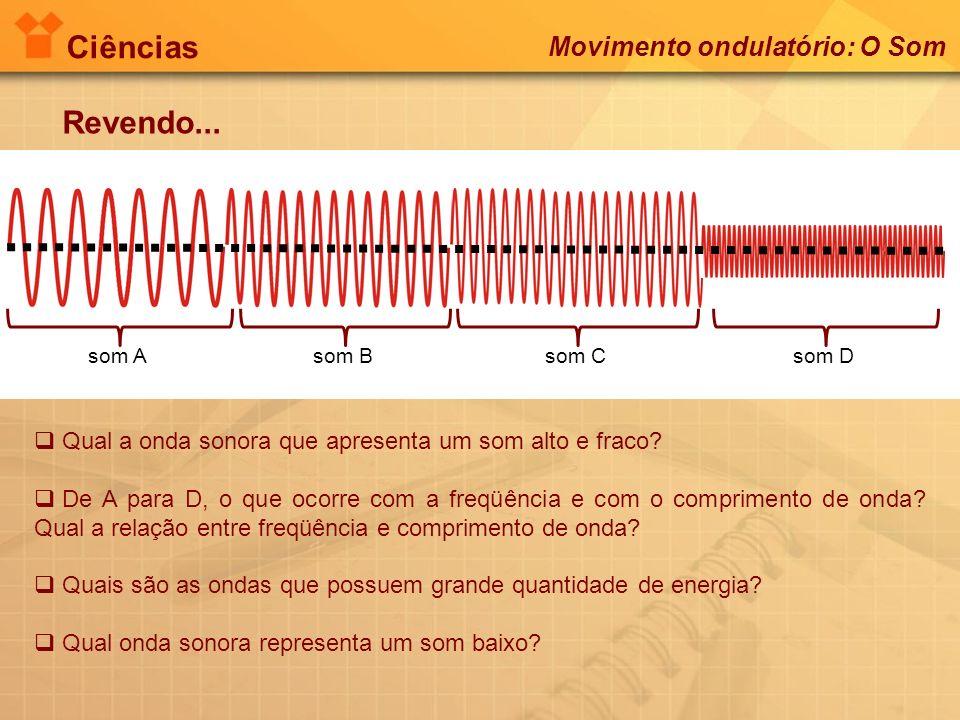 Ciências Revendo... Movimento ondulatório: O Som