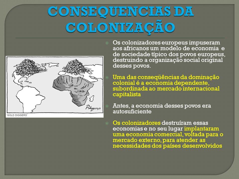 CONSEQUENCIAS DA COLONIZAÇÃO