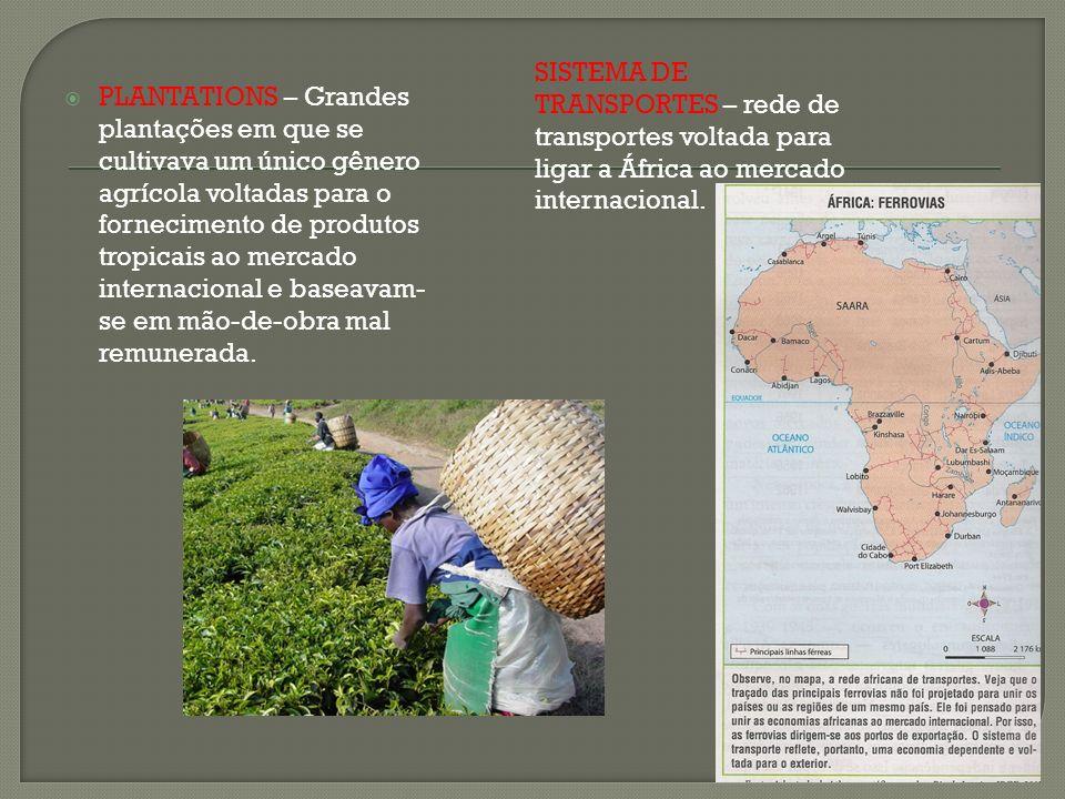 SISTEMA DE TRANSPORTES – rede de transportes voltada para ligar a África ao mercado internacional.