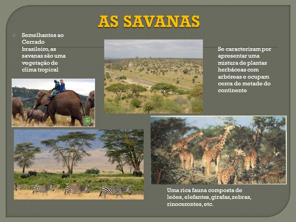 AS SAVANAS Semelhantes ao Cerrado brasileiro, as savanas são uma vegetação de clima tropical.