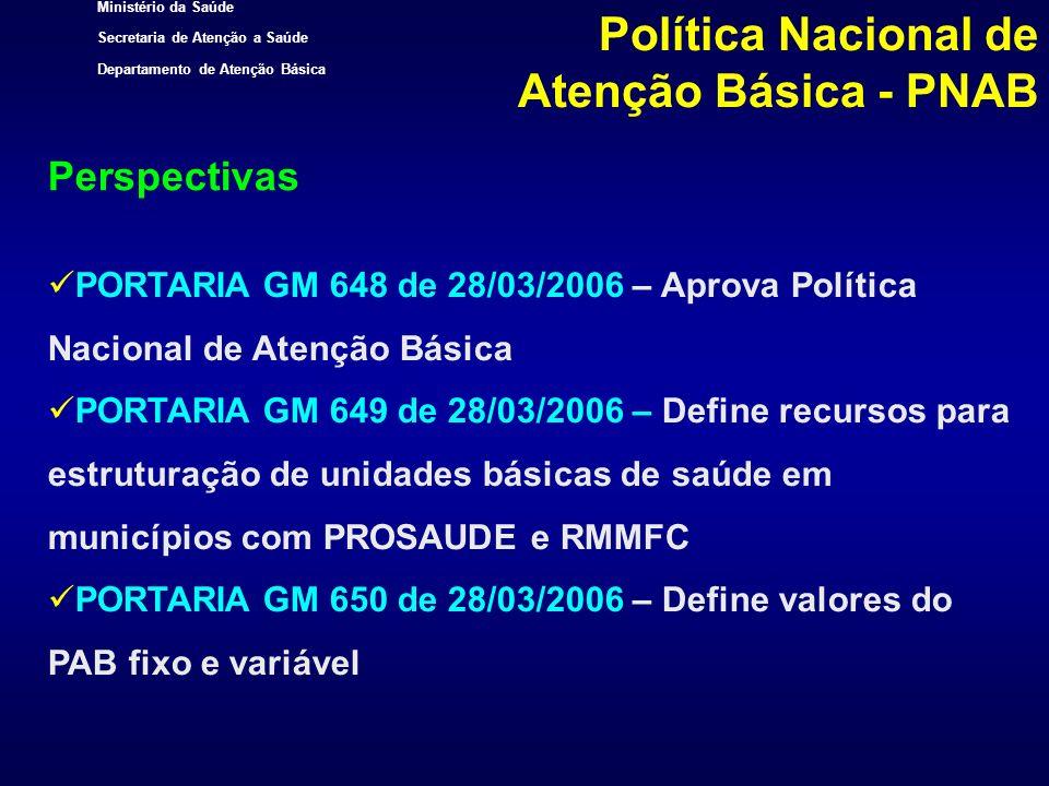 Perspectivas Política Nacional de Atenção Básica - PNAB