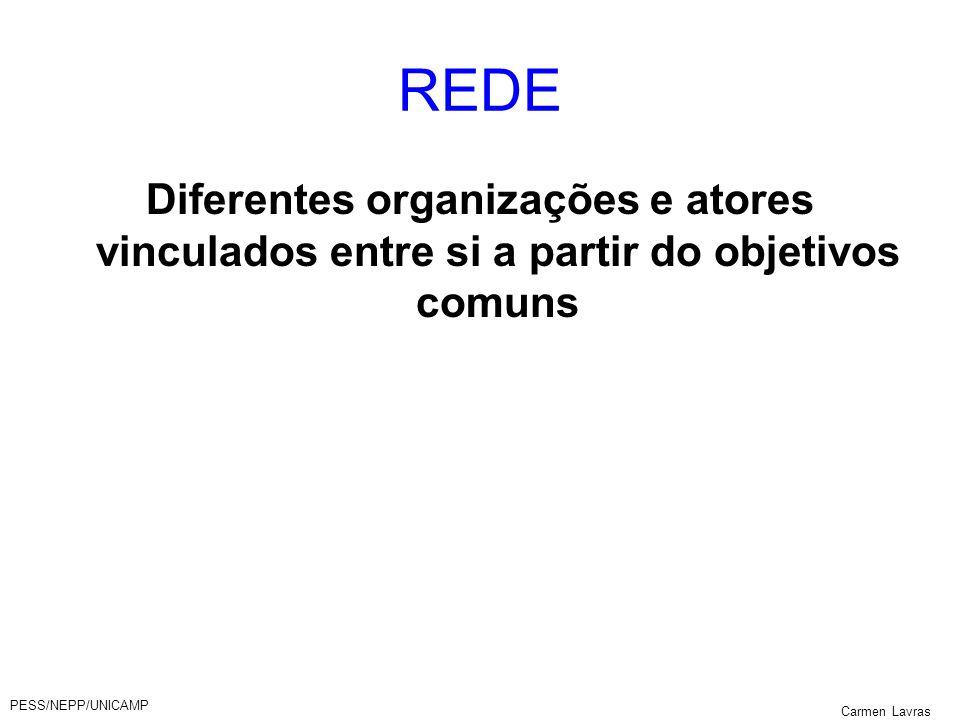 REDE Diferentes organizações e atores vinculados entre si a partir do objetivos comuns. PESS/NEPP/UNICAMP.