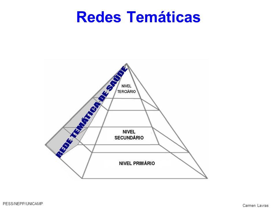 Redes Temáticas PESS/NEPP/UNICAMP Carmen Lavras