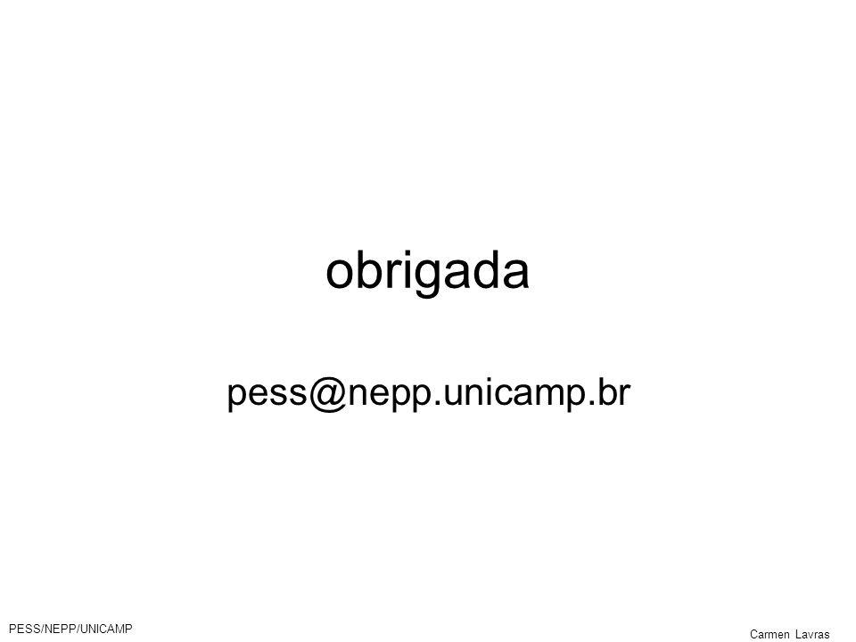 obrigada pess@nepp.unicamp.br PESS/NEPP/UNICAMP Carmen Lavras