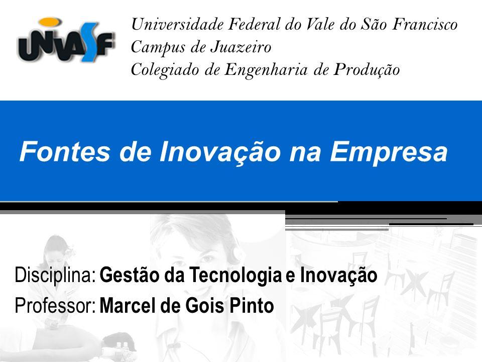 Fontes de Inovação na Empresa