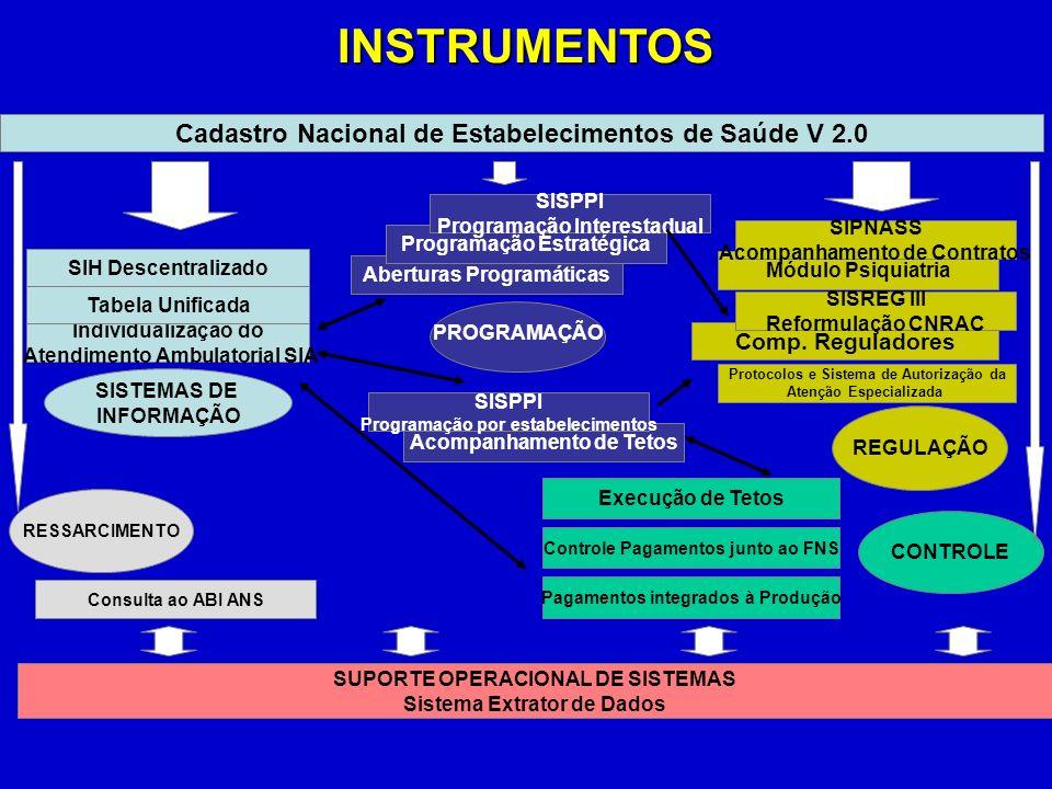 INSTRUMENTOS Cadastro Nacional de Estabelecimentos de Saúde V 2.0