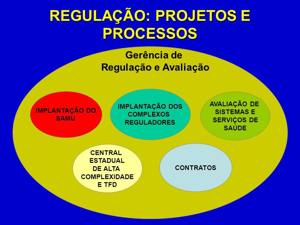 REGULAÇÃO: PROJETOS E PROCESSOS