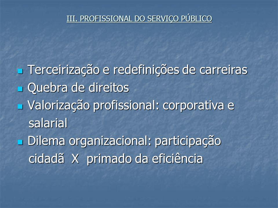 III. PROFISSIONAL DO SERVIÇO PÚBLICO